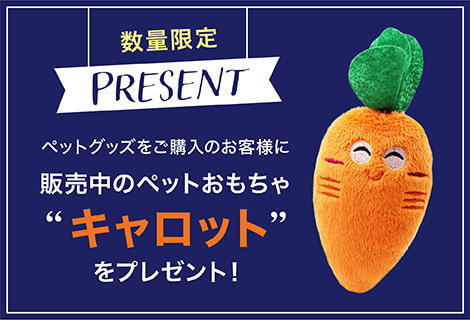 carrotpresent