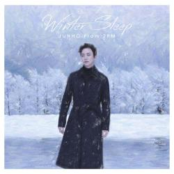 JUNHO(From2PM) - Winter Sleep(初回生産限定盤A)(DVD付) CD+DVD, Limited Edition